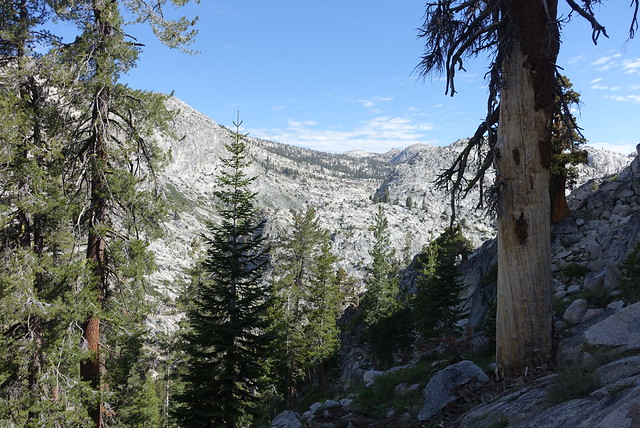 North Yosemite scenery