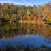 McDonough Fall Colors by thoeflich