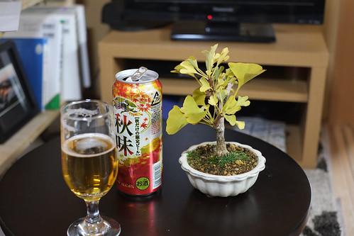 イチョウ盆栽