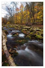 Rondout Creek in Autumn, Peekamoose Mountain, Catskills