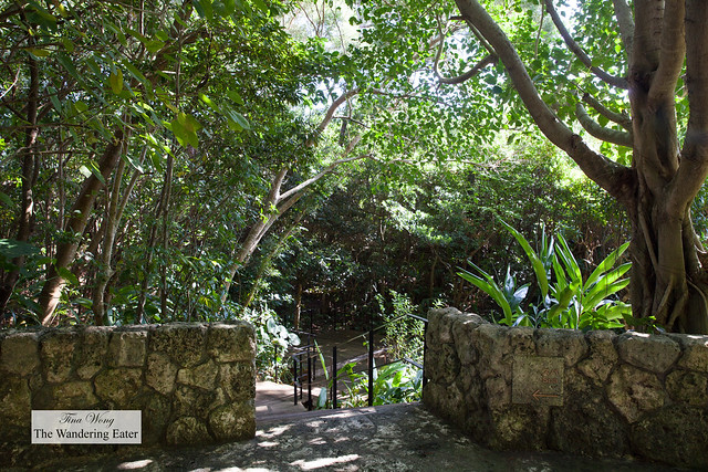 Stairs leading to the nature walk and the Spa
