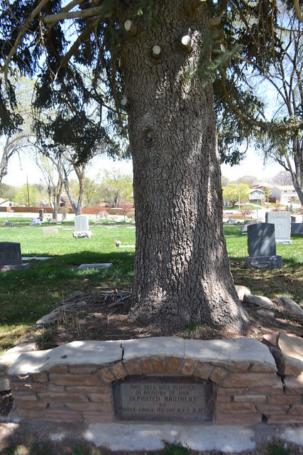 AF & AM memorial tree