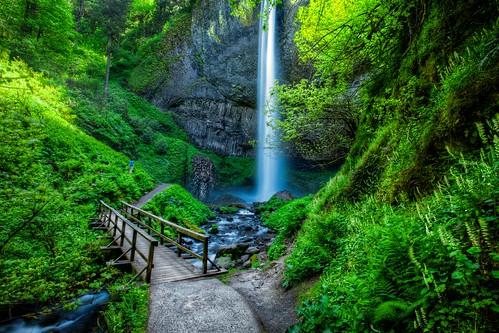 bridge topf25 water oregon creek landscape waterfall nw northwest or scenic falls trail waterfalls pacificnorthwest columbiagorge columbiarivergorge latourellfalls latourell amati lautrell columbiagorgehighway lautrellfalls alanamati