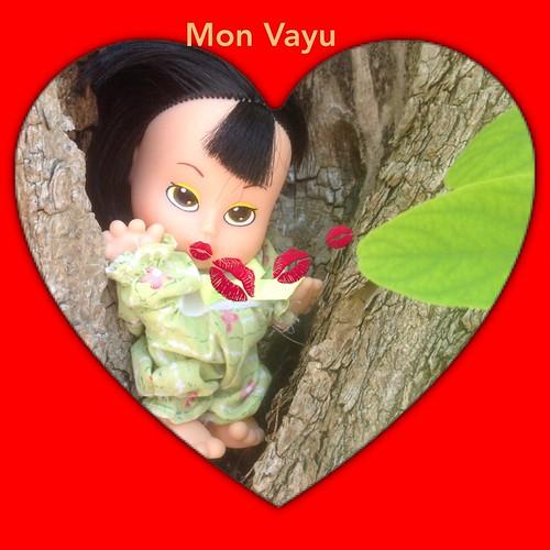 [Vayu] Sur le pot p.6 31/01/16 - Page 4 14496523938_3c72cd0483