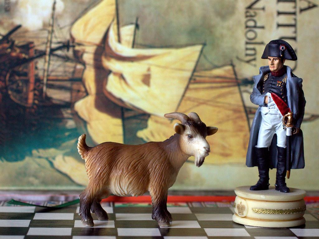 diálogos de Napoleón y una cabra (apuntes de parasofía I)