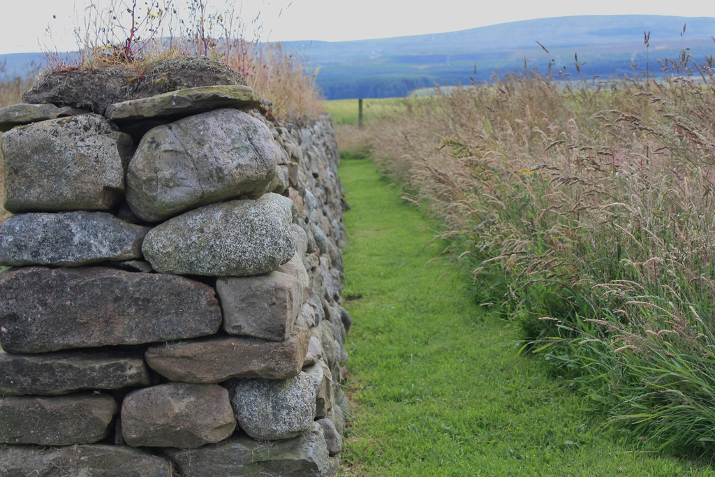 Culloden Stone Wall