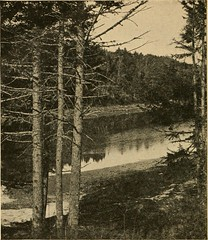 "Image from page 335 of ""New England; a human interest geographical reader"" (1917)"