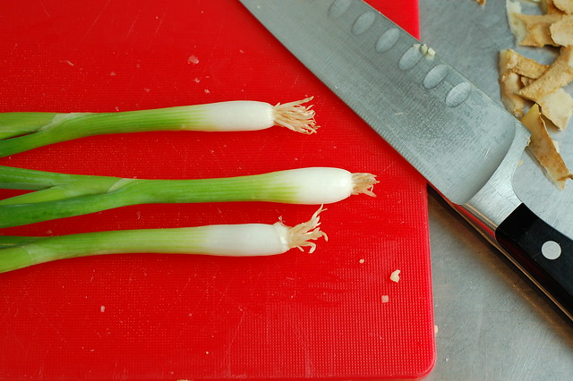Scallions by Eve Fox, the Garden of Eating, copyright 2014