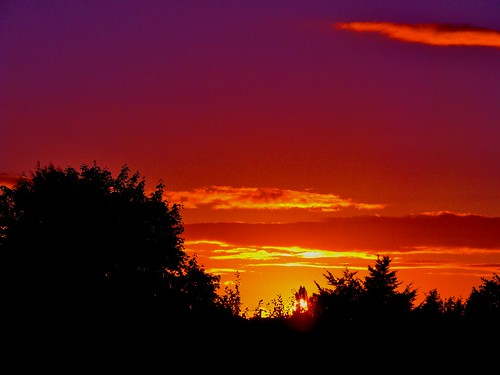 sunset surreal beautifulweather surrealsunset purpleorangeyellowsunset