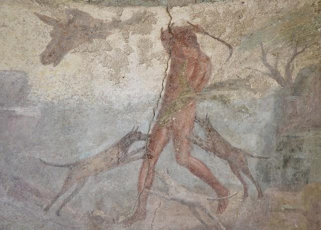 In situ wall fresco depicting the myth of Actaeon, Pompeii