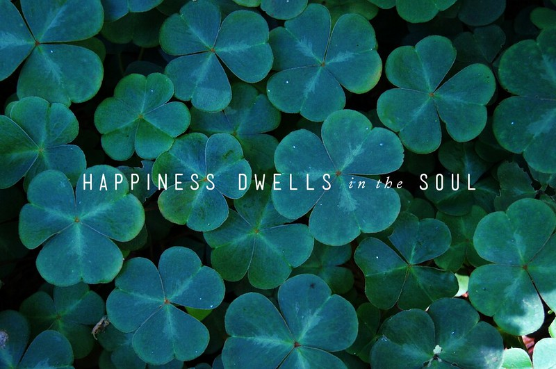 Happiness dwells in the soul.
