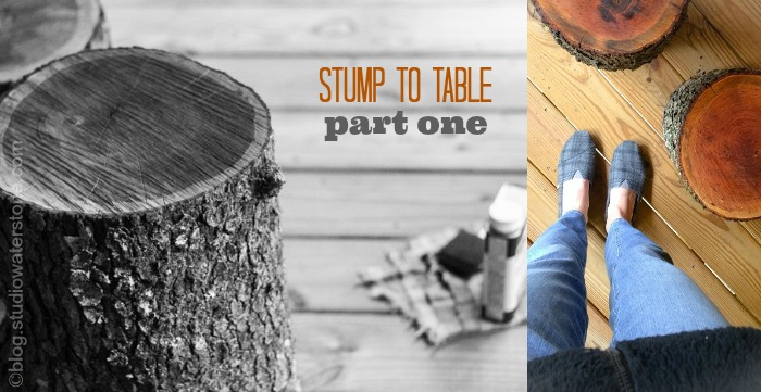Stump to table: Part One