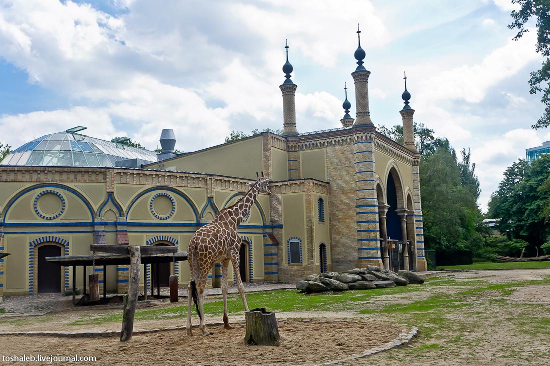 Берлин_зоопарк-33