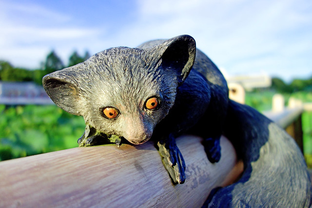 Photo:Statue of Aye-aye / アイアイの像 By Dakiny