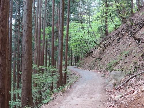 Approaching Jigokudani Monkey Park