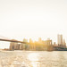 New York City - Brooklyn Bridge - 1 WTC - Skyline - Sunset by Vivienne Gucwa