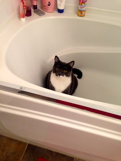 Crick in the tub