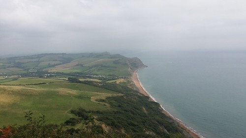 Looking east to Seatown and West Bay from Golden Cap #SWCP #sh