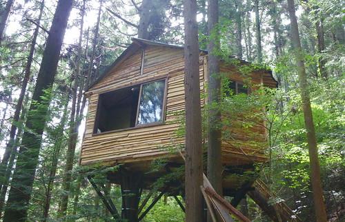 ★藤野の夏遊び★ツリーハウス、木工遊び
