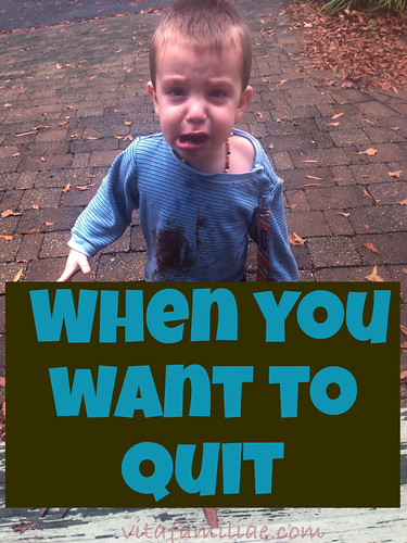 Homeschooling – When You Want To Quit