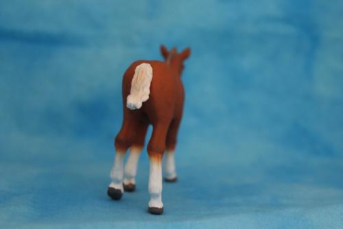 Walkaround of the 2014 Mojo Fun Suffolk Punch Foal 15064212462_a5f47f1b1c