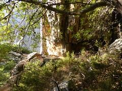 Montée de Bocca Pulischellu : un autre abri-bivouac dans la montée