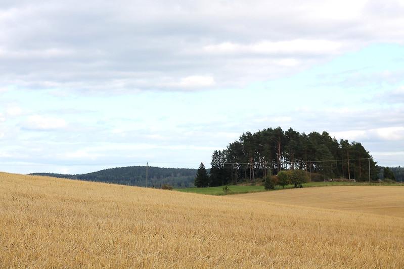 peltoaaa