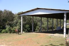 Na inauguração do Serviço de Hipoterapia e Prática Equestre da Unicentro, em Guarapuava