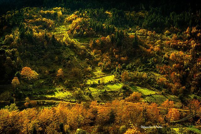 In-the-Ipiros-mountains-V, Nikon D3200, Sigma 28-105mm F2.8-4 Aspherical