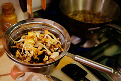 Ottolenghi's mushroom and walnut galette