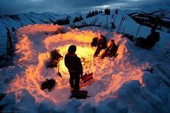 Coneys on Coney's.  #winteriscoming  #wintercamping #colorado #skiing #campfire #gitzoinspires #livelifeproof