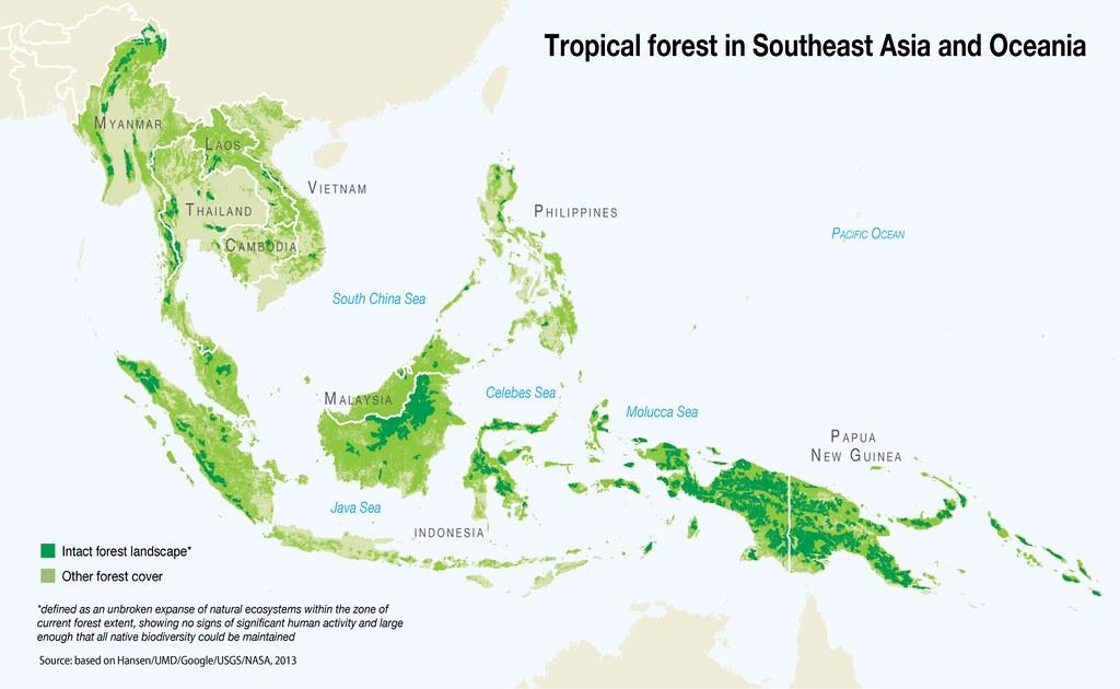 southeast asia and milo Nestle milo, nestle milo suppliers directory - find variety nestle milo suppliers, manufacturers  southeast asia 40%, domestic market 25%, mid east 10%.