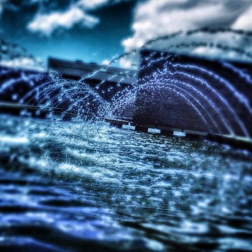 Splash (162/365)