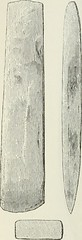 """Image from page 129 of """"The ancient stone implements, weapons, and ornaments, of Great Britain"""" (1872)"""