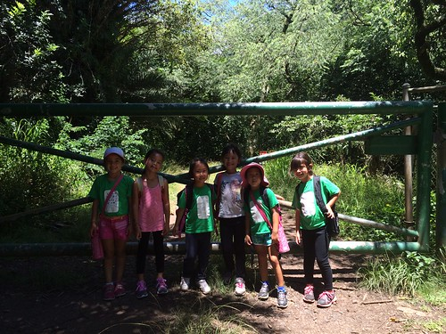 Troop 870 at Moanalua Valley Trail