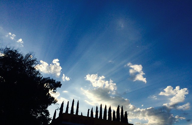 Photo of the week: sunbeams