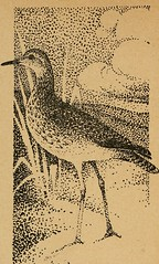 "Image from page 15 of ""Out-door reveries"" (1920)"