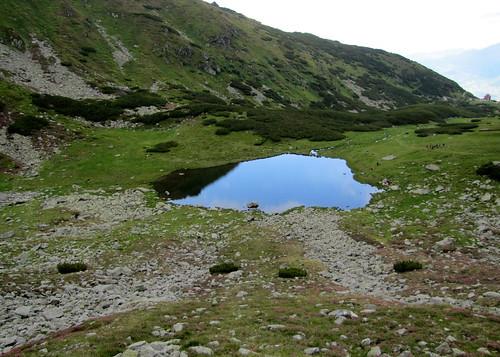 summer mountains hike hegy mountaintrail nyár túra radnaihavasok maramureș máramaros laculiezer canonpowershotsx20is iezerlake hartaromâniei hegyiösvény mosolygótó munțiirodnei thepietrosulrodneipeak anagypietroszcsúcs horthycsúcs vârfulpietrosulrodnei romániatérképe