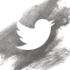 snugly_twitter