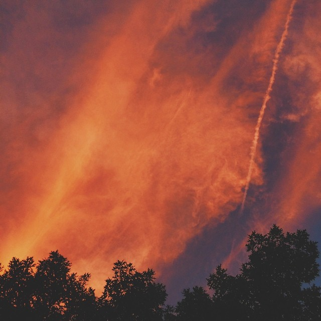 Trees on fire? Nope. Just an Indiana sunset. {#vscocam #vsco #indiana #sunset #midwest #clouds #sky #orange #evening #summer}