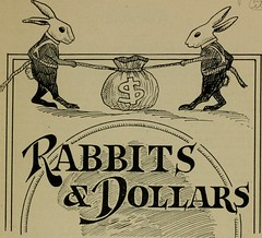 "Image from page 4 of ""Rabbits and dollars; the book that teaches coined rabbitology .."" (1920)"