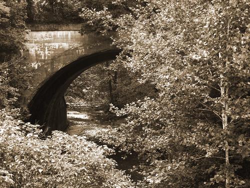 railroad bridge tree sepia creek landscape stream indiana viaduct avon 2014 project52