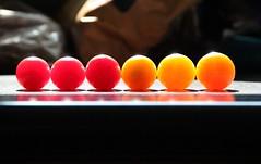 tomato gradient