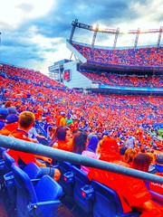 Bleed Orange & Blue
