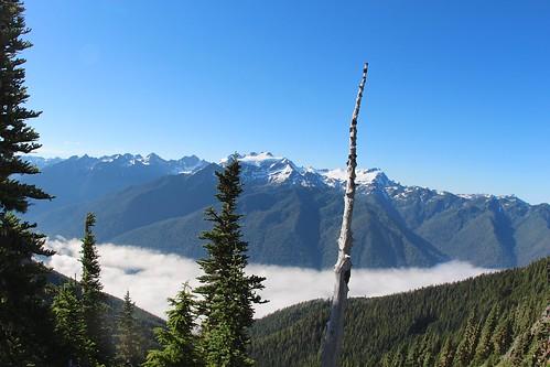 blue sky mountain fog view nps clear trail olympic overlook highdivide deaftalent deafoutsidetalent deafoutdoortalent