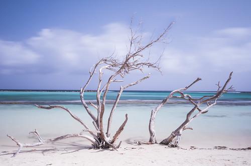 longexposure beach aruba