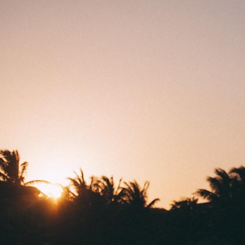 light sunset beach animal sunrise zoo honduras carlos lopez roatan hipo