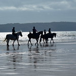 little ride ...