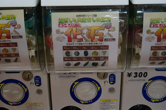 20140907-DSC00556.jpg