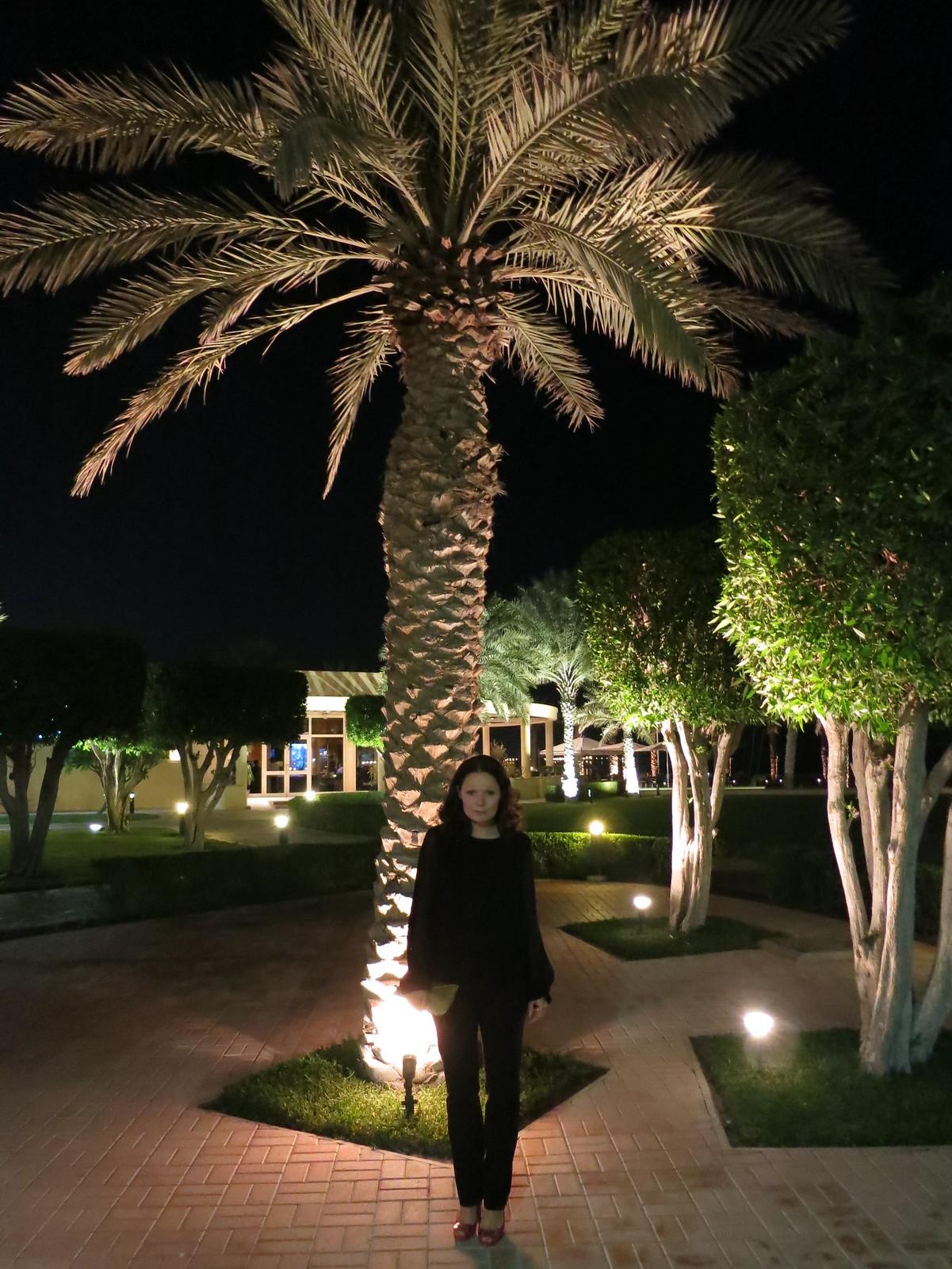 Qatar 349